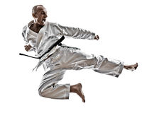 Karate man Stock Image