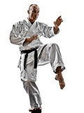 Karate man Stock Images