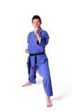 Karate man posing Royalty Free Stock Photo