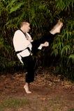Karate-Mann stockfotos