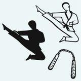 Karate mannelijk, jong vechter en nunchakuwapen stock illustratie