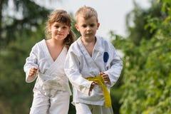 Karate martial Arts Royalty Free Stock Photo