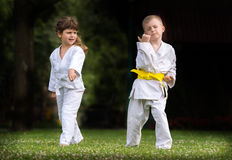 Karate martial Arts. Karate kids martial Arts on the field Royalty Free Stock Photos