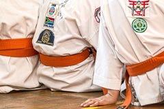 Karate, Martial Arts, Sport, Belt Stock Photography