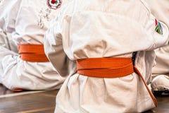 Karate, Martial Arts, Sport, Belt Royalty Free Stock Photo