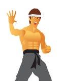 Karate Master Stock Photo