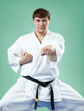 Karate master Royalty Free Stock Images