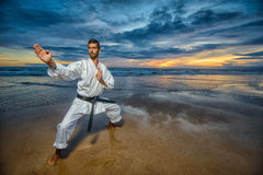 Karate master in defense position Stock Photo