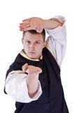 Karate men Royalty Free Stock Photo