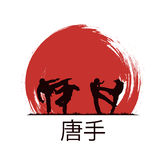 Karate. Men are engaged in karate Royalty Free Stock Photography