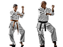 Karate men teenager student teacher teaching Royalty Free Stock Photography