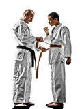 Karate men teenager student teacher teaching Royalty Free Stock Photos