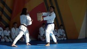 Karate stock video