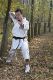 Karate and nunchaku Royalty Free Stock Images