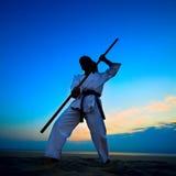 Karate op zonsondergangstrand royalty-vrije stock afbeelding