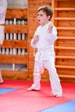 Karate opleiding stock foto