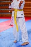 Karate opleiding royalty-vrije stock fotografie