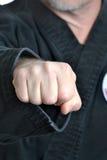 Karate pięść zdjęcie stock