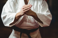 Karate player performing karate stance Stock Photo