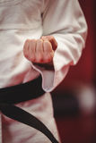 Karate player performing karate stance Royalty Free Stock Photography