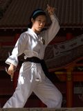 Karate Pose Royalty Free Stock Photography