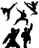 Karate Pose Madness. Different Male & Females In Karate Poses Royalty Free Stock Photos