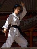 karate poserar Royaltyfri Fotografi