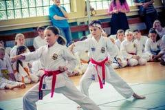 Karate practicante del niño Foto de archivo libre de regalías
