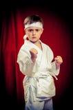 Karate practicante del niño Imagen de archivo