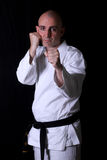 Karate Practice Stock Photography