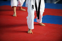 Karate practitioners on competition floor Royalty Free Stock Photography