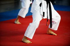 Karate practitioners on competition floor Royalty Free Stock Images