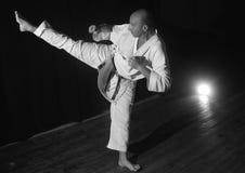 Karate przedstawienie Obrazy Royalty Free