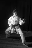 Karate przedstawienie Obraz Royalty Free