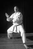 Karate przedstawienie Obraz Stock