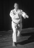 Karate przedstawienie Fotografia Royalty Free