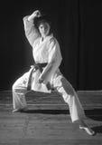 Karate przedstawienie Fotografia Stock