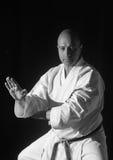 Karate przedstawienie Zdjęcie Royalty Free