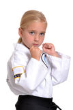 Karate Ready Stock Image