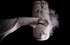 Karate round kick. In a punching bag Royalty Free Stock Images