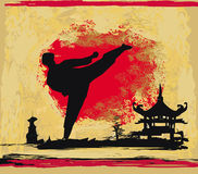 Karate-Schmutzhintergrund Stockfotos