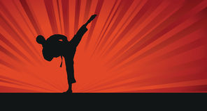 Karate silhouette background Royalty Free Stock Photo