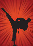 Karate silhouette background Royalty Free Stock Photos