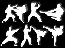 Karate silhouettes Stock Image