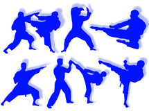 Karate silhouettes Royalty Free Stock Images