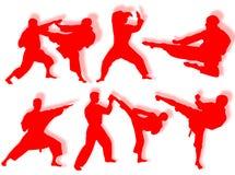 Karate silhouettes Royalty Free Stock Photos