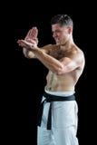 Karate spełniania karate myśliwska postawa obrazy stock