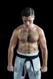 Karate spełniania karate myśliwska postawa obrazy royalty free