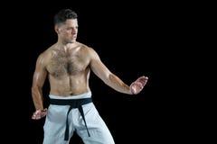 Karate spełniania karate myśliwska postawa obraz stock