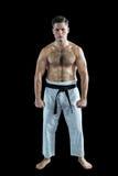 Karate spełniania karate myśliwska postawa fotografia royalty free